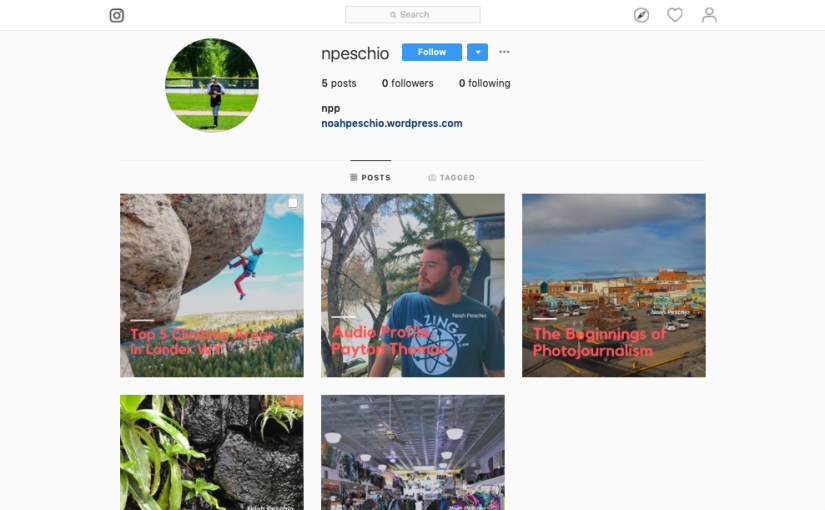 Utilizing Instagram to Promote Stories (Blog Post #8)